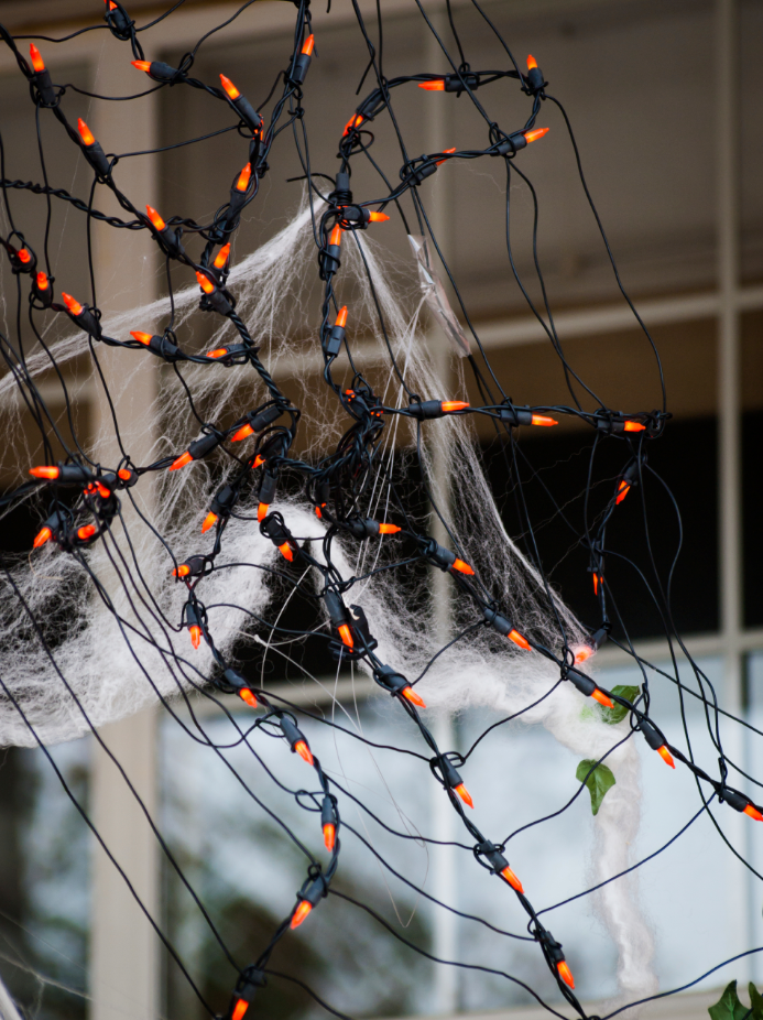 A Web of Lights Makes a Great Halloween Decoration